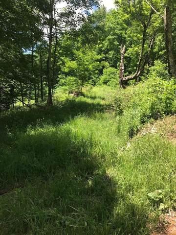 15 Hawthorn Ridge Rd., SLATYFORK, WV 26291 (MLS #20-1571) :: Greenbrier Real Estate Service