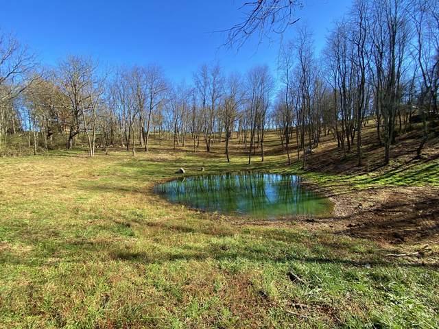 Seneca Trail N, Maxwelton, WV 24957 (MLS #20-1597) :: Greenbrier Real Estate Service