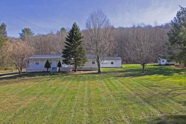 1931 Zenith Rd, GAP MILLS, WV 24941 (MLS #20-1663) :: Greenbrier Real Estate Service