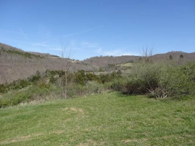 Bostic Lane, Wolf Creek, WV 24993 (MLS #20-1783) :: Greenbrier Real Estate Service
