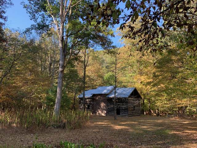 9950 Zenith Rd, UNION, WV 24983 (MLS #20-82) :: Greenbrier Real Estate Service
