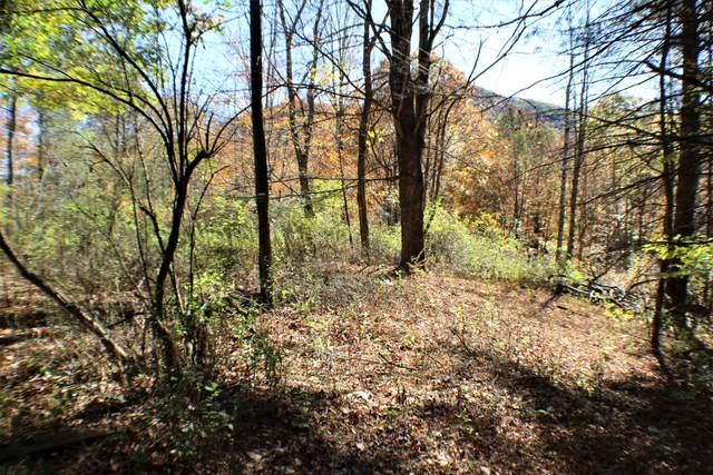 Stamping Creek, HILLSBORO, WV 24946 (MLS #20-892) :: Greenbrier Real Estate Service
