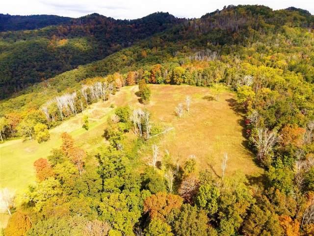 801 Doe Hollow Rd, HINTON, WV 25951 (MLS #21-1033) :: Greenbrier Real Estate Service