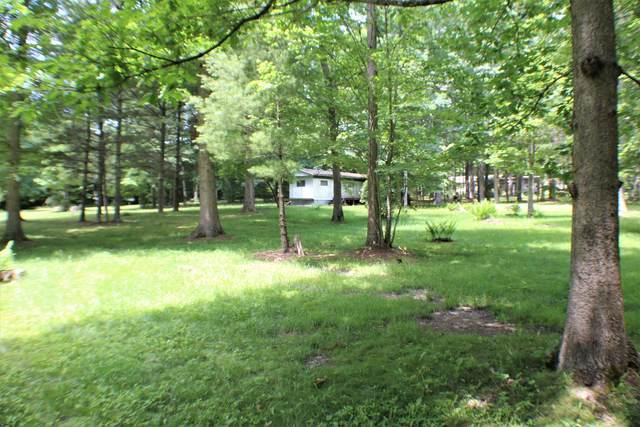 Lakeside Drive, GAP MILLS, WV 24941 (MLS #21-1050) :: Greenbrier Real Estate Service