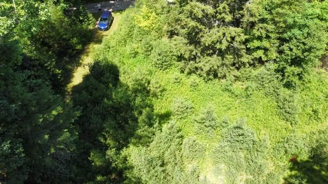 5 Beaver Creek, HUNTERSVILLE, WV 24954 (MLS #21-1053) :: Greenbrier Real Estate Service