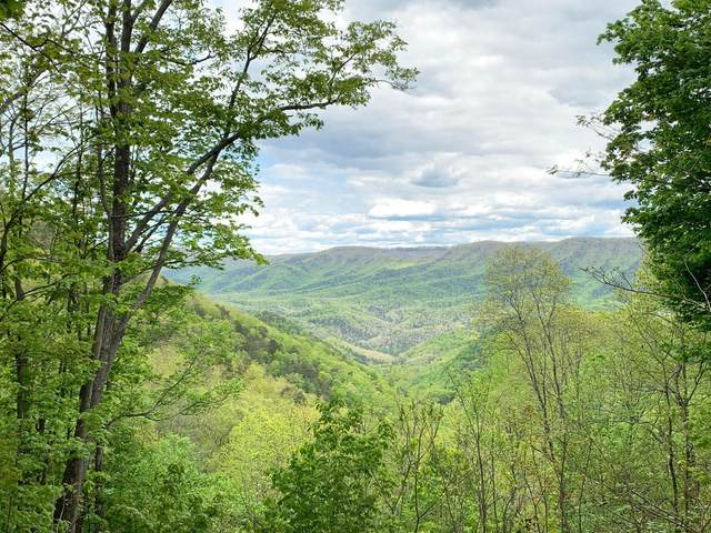 Lot 125 Withrow Landing, CALDWELL, WV 24925 (MLS #21-1072) :: Greenbrier Real Estate Service