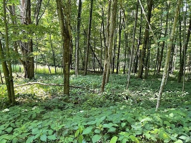 Deer Springs Rd, VALLEY HEAD, WV 26294 (MLS #21-1147) :: Greenbrier Real Estate Service