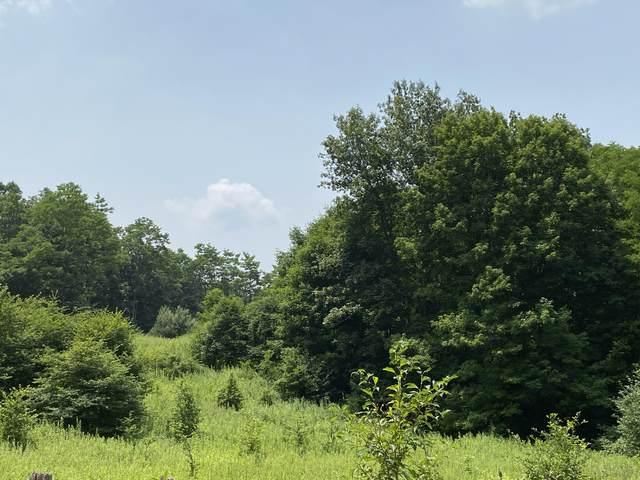 Big Spring Elk Less Hydrocarbo, SLATYFORK, WV 26291 (MLS #21-1159) :: Greenbrier Real Estate Service