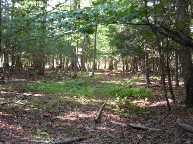 1223a Brush Country Rd., MARLINTON, WV 24954 (MLS #21-1187) :: Greenbrier Real Estate Service