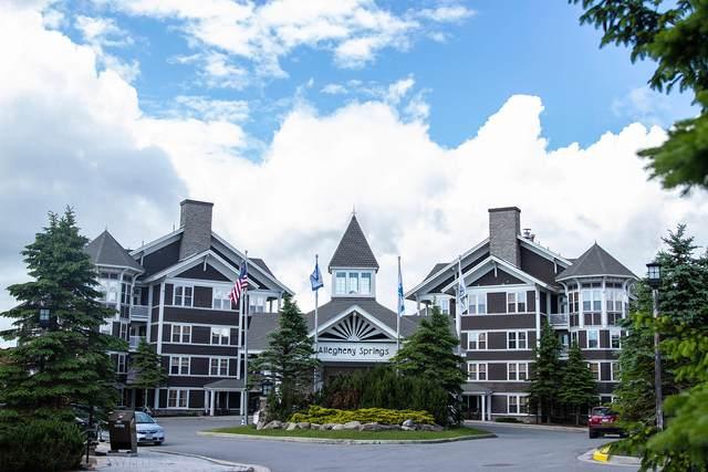 33 Allegheny Springs Lane #136, SNOWSHOE, WV 26209 (MLS #21-1198) :: Greenbrier Real Estate Service