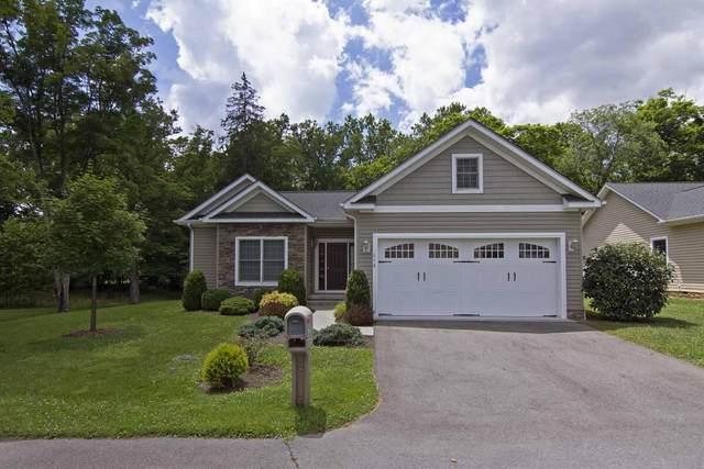 113 Eloise Cir, White Sulphur Springs, WV 24986 (MLS #21-1199) :: Greenbrier Real Estate Service