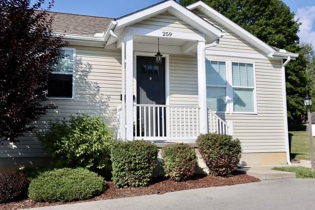 259 Elizabeth St., LEWISBURG, WV 24901 (MLS #21-1201) :: Greenbrier Real Estate Service