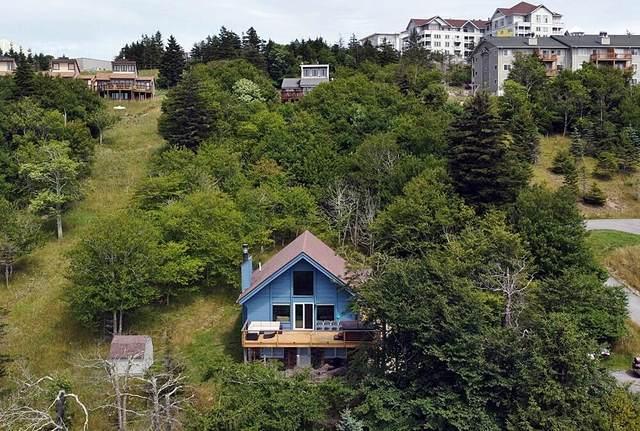 774 S. West Ridge Rd, SNOWSHOE, WV 26209 (MLS #21-1206) :: Greenbrier Real Estate Service
