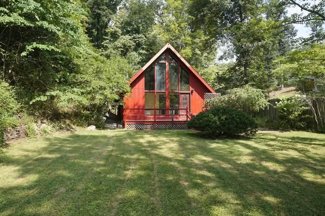 177 Rip Van Winkle Rd, White Sulphur Springs, WV 24986 (MLS #21-1209) :: Greenbrier Real Estate Service