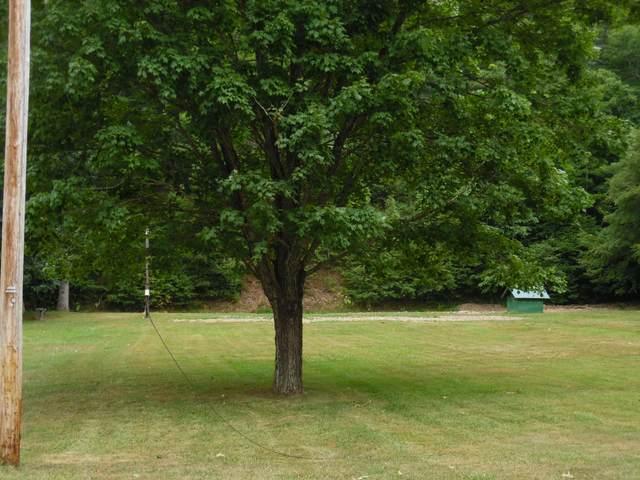 3605 Pocahontas Highway, MARLINTON, WV 24954 (MLS #21-1244) :: Greenbrier Real Estate Service