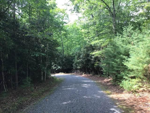 Address Not Published, Buckeye, WV 24924 (MLS #21-1334) :: Greenbrier Real Estate Service