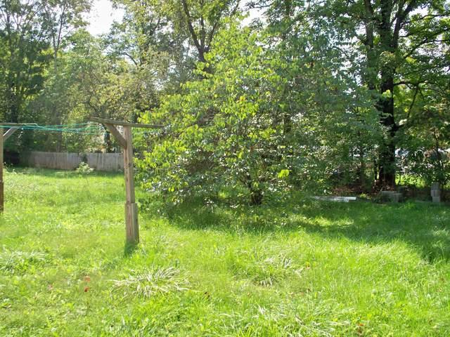 159 Freeland Ave, White Sulphur Springs, WV 24986 (MLS #21-1436) :: Greenbrier Real Estate Service