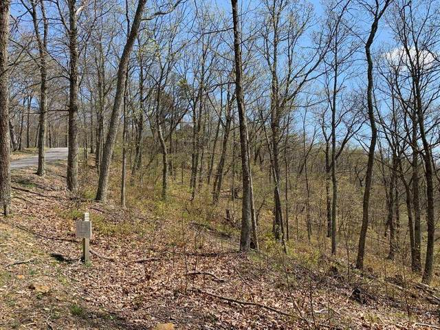 Lot 49 White Rock Trl, CALDWELL, WV 24925 (MLS #21-149) :: Greenbrier Real Estate Service