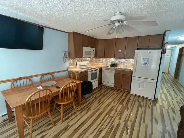 75 Mountain Lodge Ln #141, SNOWSHOE, WV 26209 (MLS #21-1553) :: Greenbrier Real Estate Service