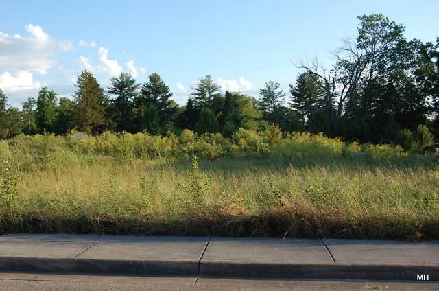 Hunter Ln, LEWISBURG, WV 24901 (MLS #21-1593) :: Greenbrier Real Estate Service