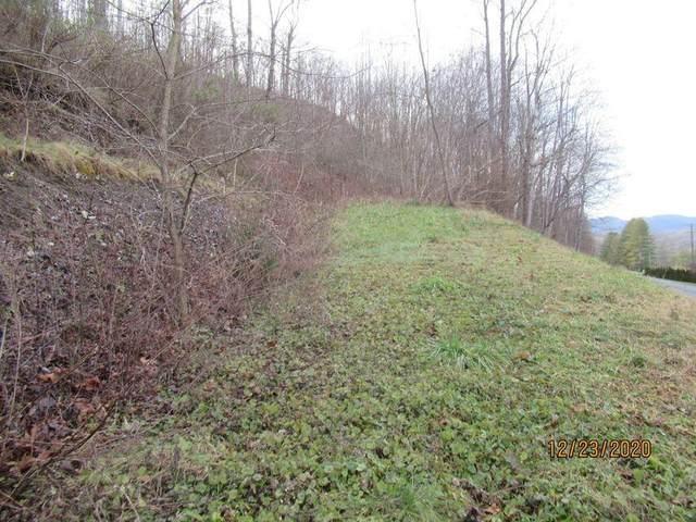 Massie Lane, Alderson, WV 24910 (MLS #21-1603) :: Greenbrier Real Estate Service