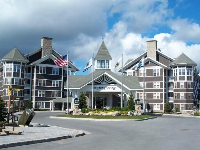 108 Allegheny Springs, SNOWSHOE, WV 26209 (MLS #21-1616) :: Greenbrier Real Estate Service