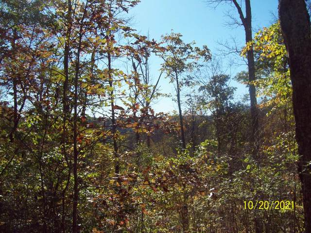 Friars Hill Rd., RENICK, WV 24966 (MLS #21-1623) :: Greenbrier Real Estate Service