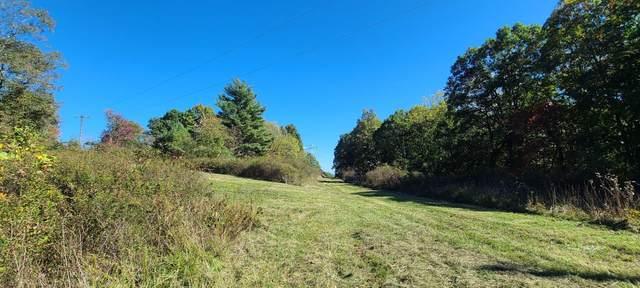 123 Ellison Ridge, JUMPING BRANCH, WV 25969 (MLS #21-1644) :: Greenbrier Real Estate Service