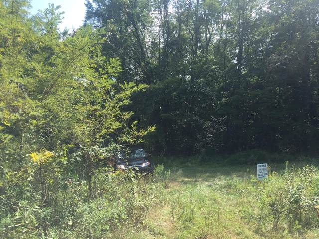 Mountain View Rd., Ronceverte, WV 24970 (MLS #21-207) :: Greenbrier Real Estate Service