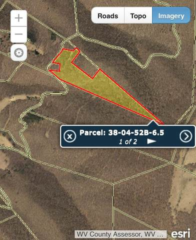 Buffalo Mtn. Road, ARBOVALE, WV 24915 (MLS #21-239) :: Greenbrier Real Estate Service