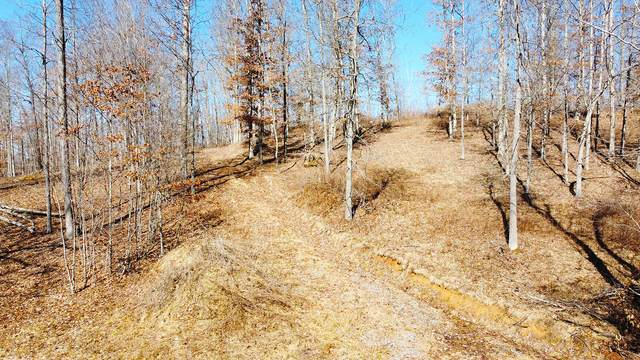 Lot 11 Bear Claw Estates Phase 2, FRANKFORD, WV 24938 (MLS #21-288) :: Greenbrier Real Estate Service