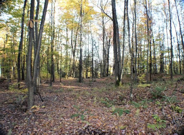 Spruce Flat Rd, Buckeye, WV 24924 (MLS #21-327) :: Greenbrier Real Estate Service