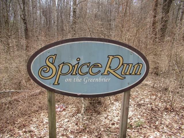 Lot 17 Spice Run, HILLSBORO, WV 24946 (MLS #21-342) :: Greenbrier Real Estate Service