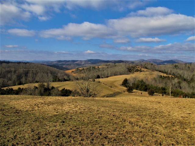 1123 Red Sulphur Marie Rd., FOREST HILL, WV 24935 (MLS #21-356) :: Greenbrier Real Estate Service