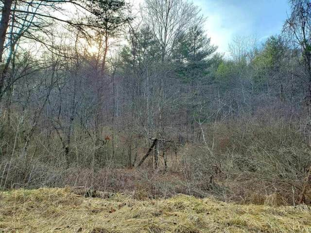 Lot 57 Overlook At Greenbrier, CALDWELL, WV 24925 (MLS #21-361) :: Greenbrier Real Estate Service