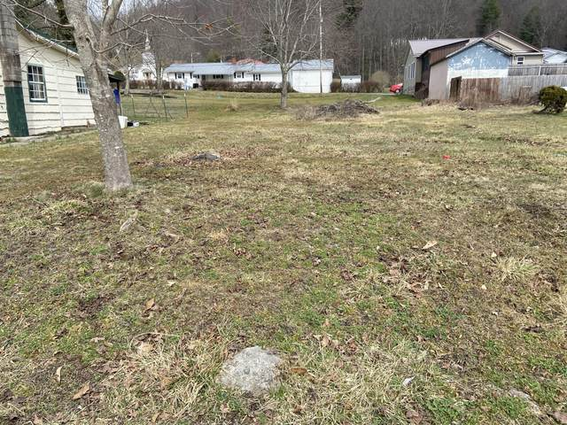 11th St, Rainelle, WV 25962 (MLS #21-376) :: Greenbrier Real Estate Service