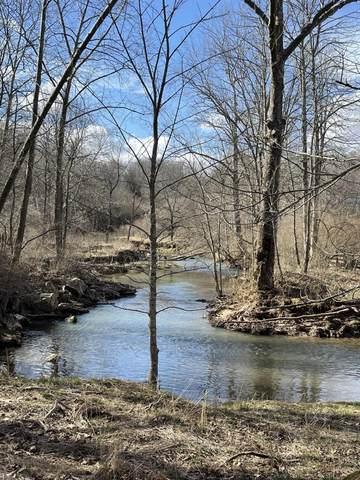 680 Fox Trail Rd, CRAWLEY, WV 24931 (MLS #21-411) :: Greenbrier Real Estate Service