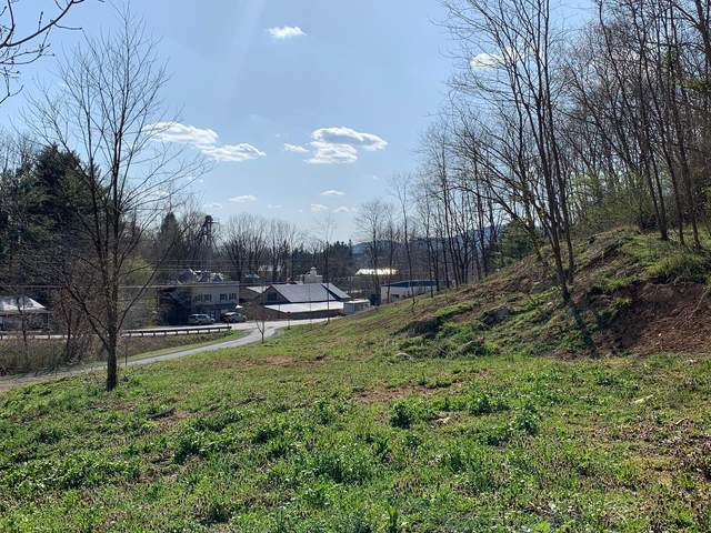 Cades Field Rd, UNION, WV 24983 (MLS #21-494) :: Greenbrier Real Estate Service