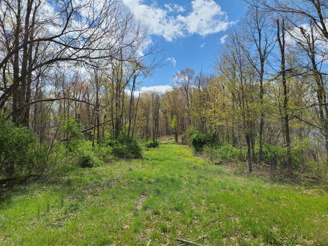 Rt. 219 Address Not Published, PETERSTOWN, WV 24963 (MLS #21-533) :: Greenbrier Real Estate Service