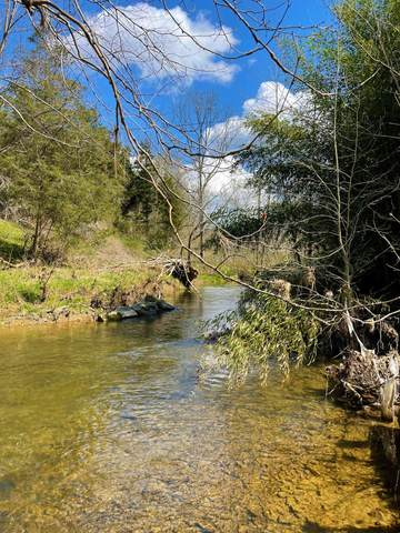 RT Seneca Trail S, UNION, WV 24983 (MLS #21-573) :: Greenbrier Real Estate Service