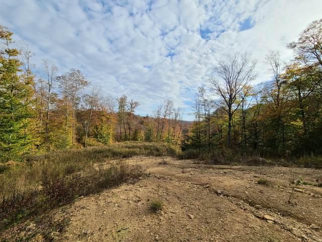 6021 Creek Road, Rainelle, WV 25962 (MLS #21-678) :: Greenbrier Real Estate Service