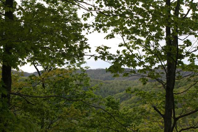 X Assigned Judson Road, HINTON, WV 25951 (MLS #21-752) :: Greenbrier Real Estate Service