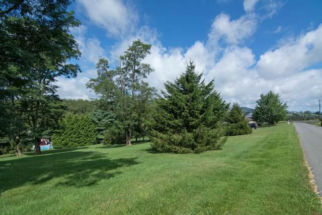 431 Wake Robin Trl, LEWISBURG, WV 24901 (MLS #21-757) :: Greenbrier Real Estate Service