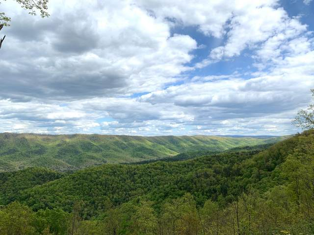 Lot 121 Withrow Landing, The Retreat, CALDWELL, WV 24925 (MLS #21-762) :: Greenbrier Real Estate Service