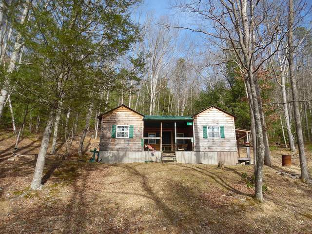 599 Curry Rd, DUNMORE, WV 24934 (MLS #21-781) :: Greenbrier Real Estate Service