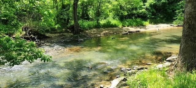 415 Blue Sulphur Springs Rd, Alderson, WV 24910 (MLS #21-810) :: Greenbrier Real Estate Service
