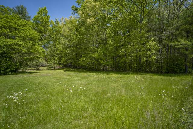 Lot 46 And 47 Montvue Drive, LEWISBURG, WV 24901 (MLS #21-815) :: Greenbrier Real Estate Service