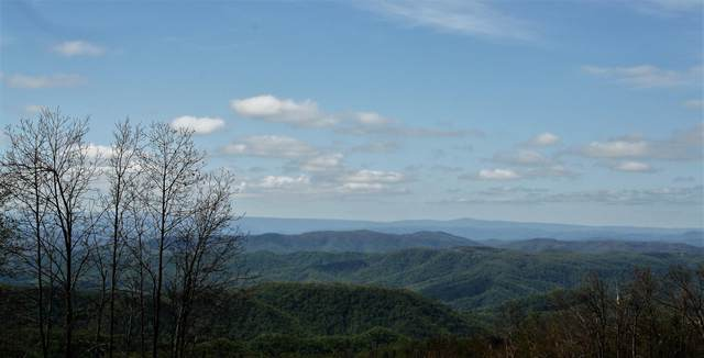 1161 Plumley Mountain Road, HINTON, WV 25951 (MLS #21-818) :: Greenbrier Real Estate Service