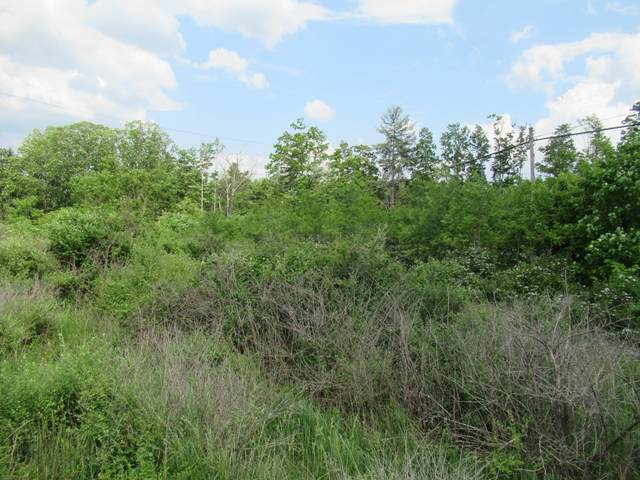 Beech Run Rd, HINTON, WV 25951 (MLS #21-838) :: Greenbrier Real Estate Service