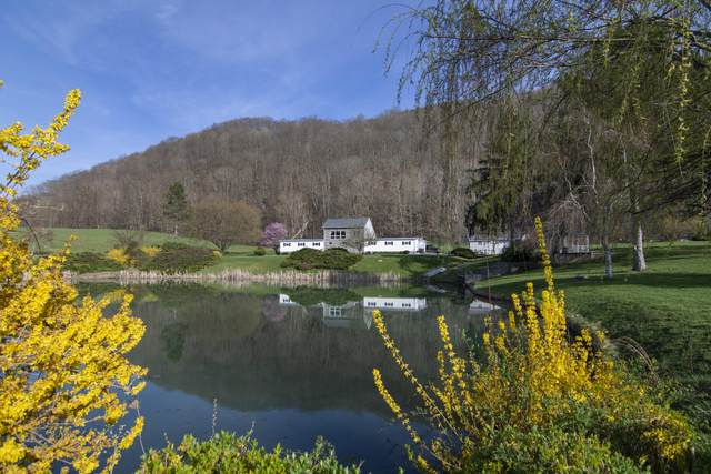 996 Tom Feamster Rd, Alderson, WV 24910 (MLS #21-866) :: Greenbrier Real Estate Service